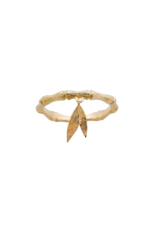 Bamboo Ring Gold