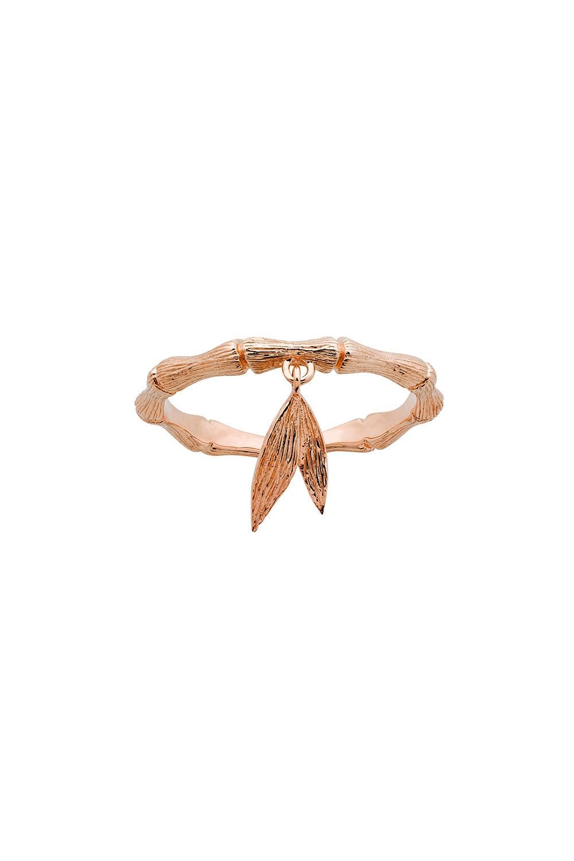 Bamboo Ring Rose Gold