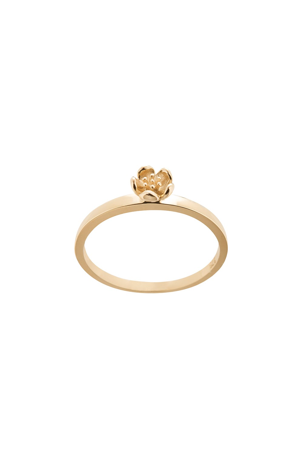 Botanical Plain Ring Gold