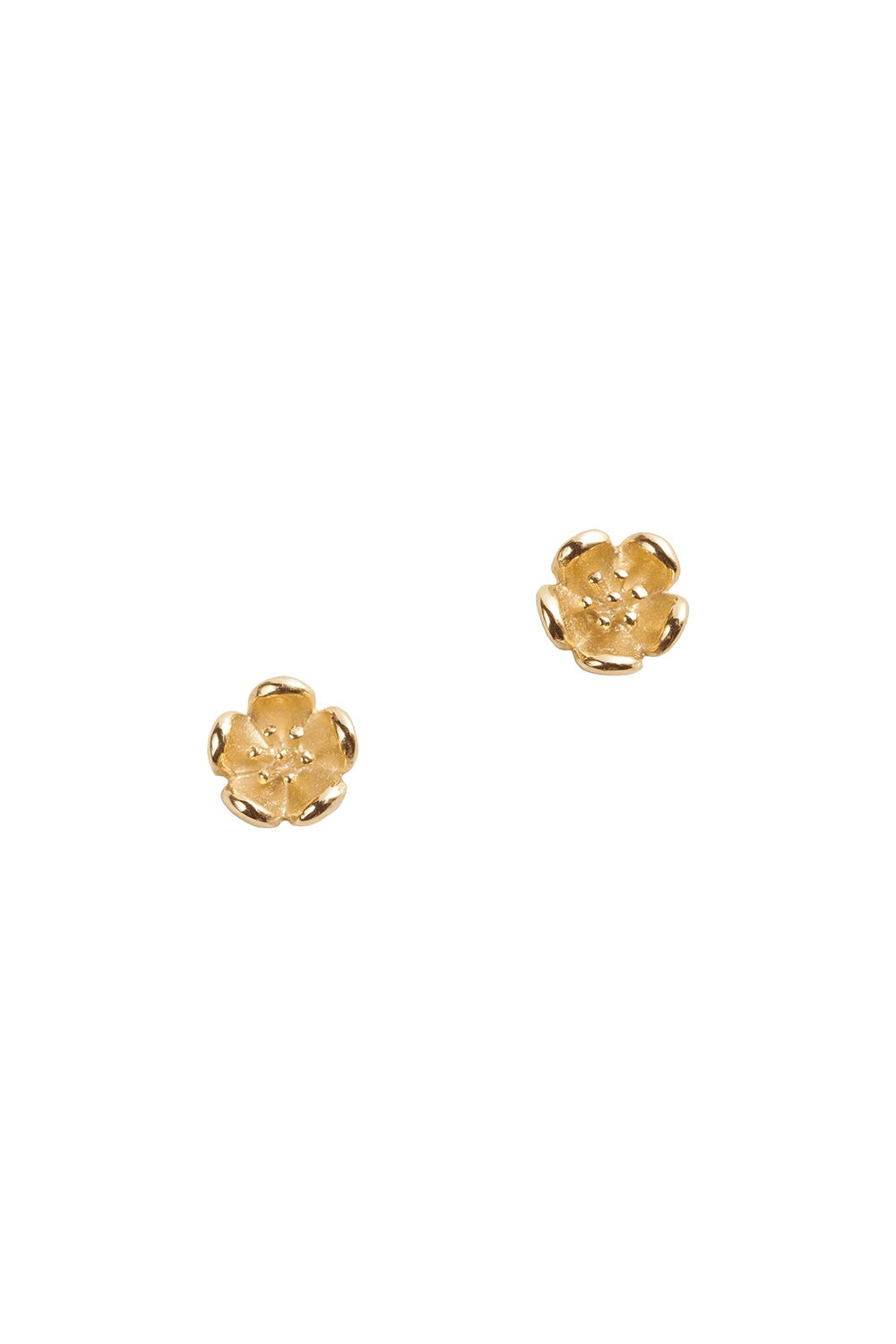 Botanical Plain Studs Gold