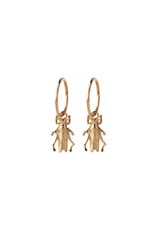 Grasshopper Sleepers Gold