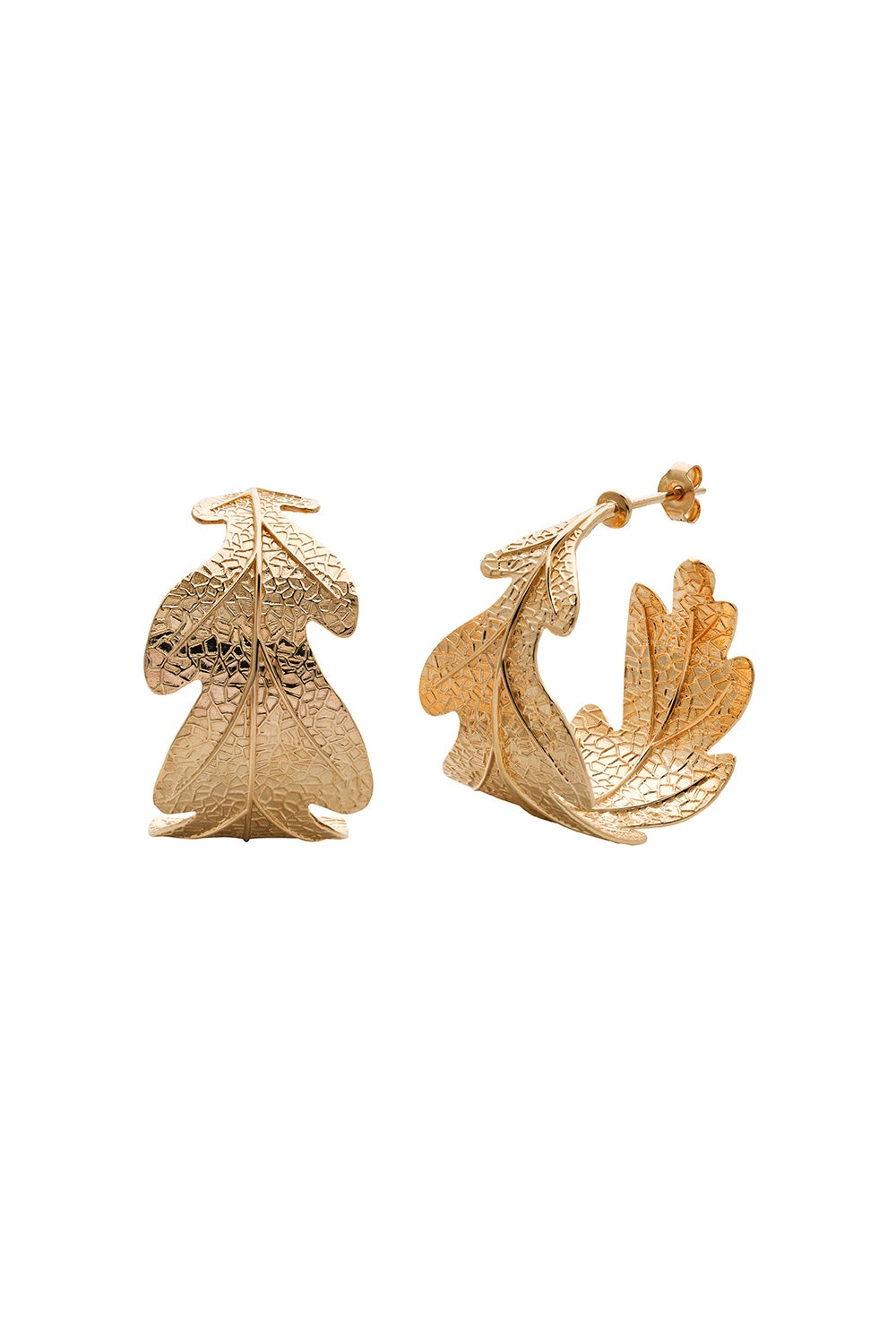 Oak Leaf Earrings Gold