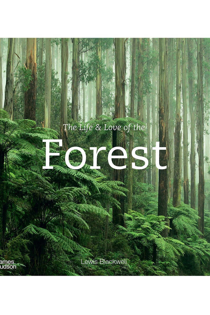 The Life and Love of the Forest by Lewis Blackwell