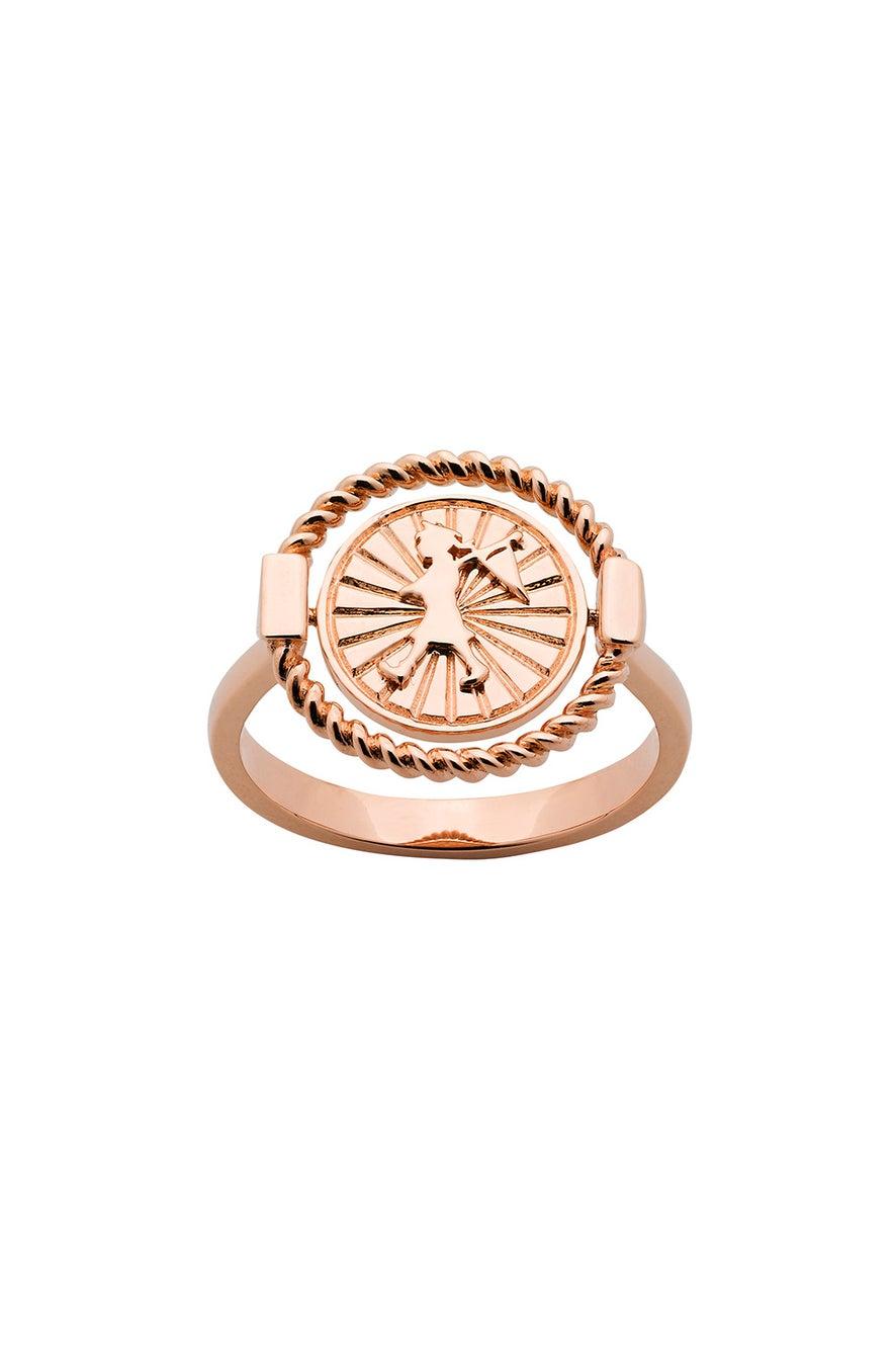 Voyager Spin Ring Rose Gold